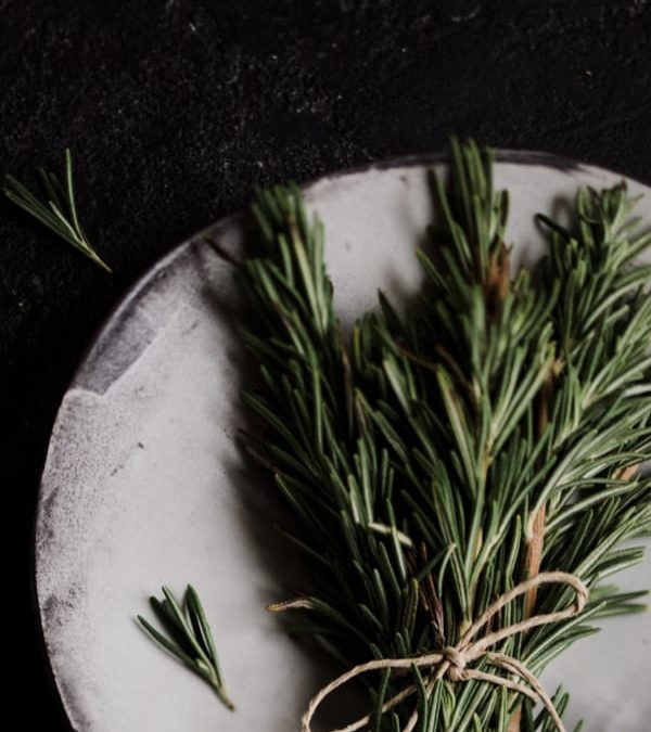 Future Plates – Celebrating Locally Sourced Food for Sustainable Health